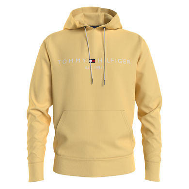 Tommy Hilfiger hoodie tommy logo